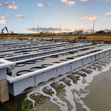 bac élevage aquaculture